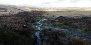 Moorland up Froggatt Edge