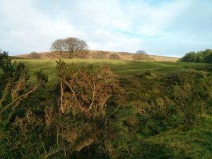 Moorland near Beeley