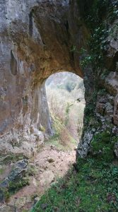 Raynard's Cave