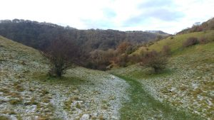 Path to Dovedale