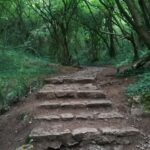 Steps to Thor's Cave